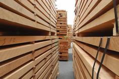 le choix des essences de bois avec select bois